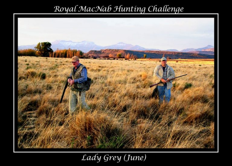Royal MacNab Hunting Challenge - Lady Grey (June)